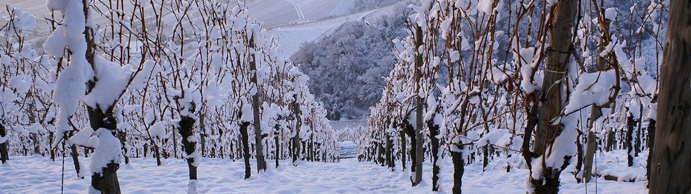 LO-STILE-Inverno